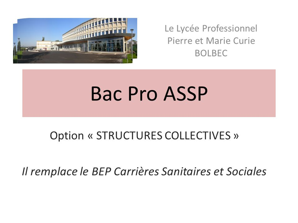 Bac Pro ASSP Option « STRUCTURES COLLECTIVES »