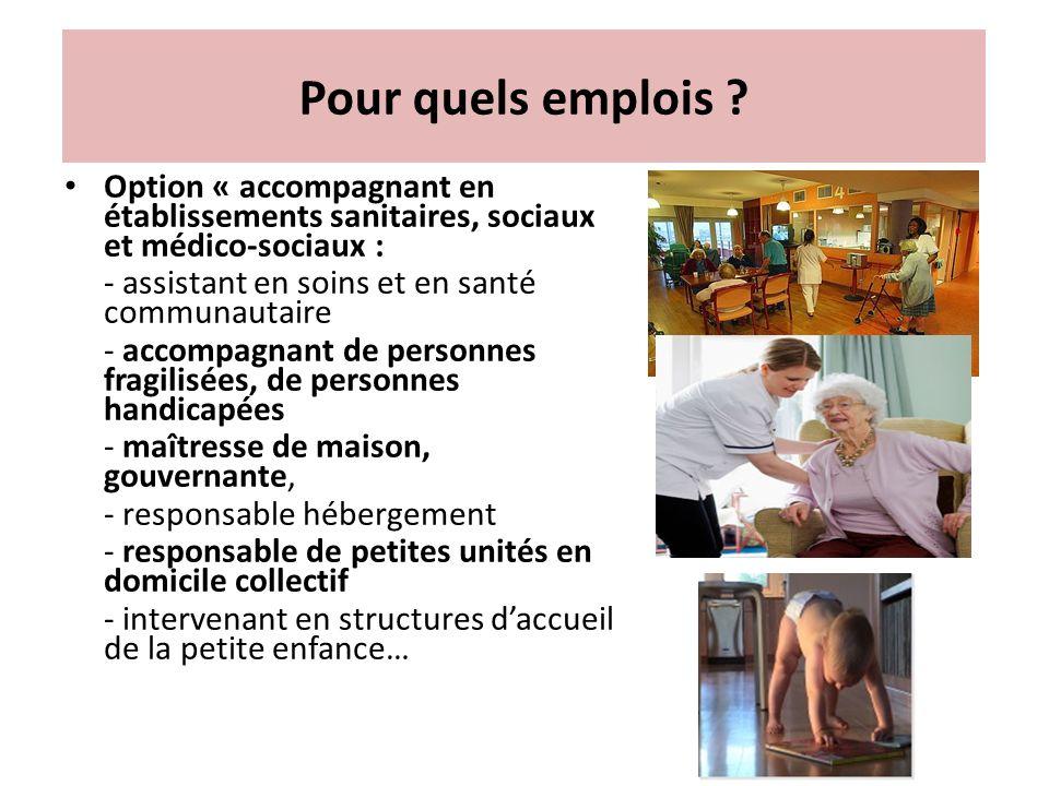 Pour quels emplois Option « accompagnant en établissements sanitaires, sociaux et médico-sociaux :