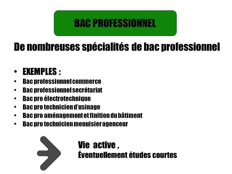 BAC PROFESSIONNEL BAC PROFESSIONNEL