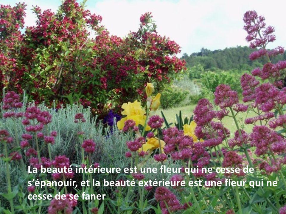 La beauté intérieure est une fleur qui ne cesse de s'épanouir, et la beauté extérieure est une fleur qui ne cesse de se faner