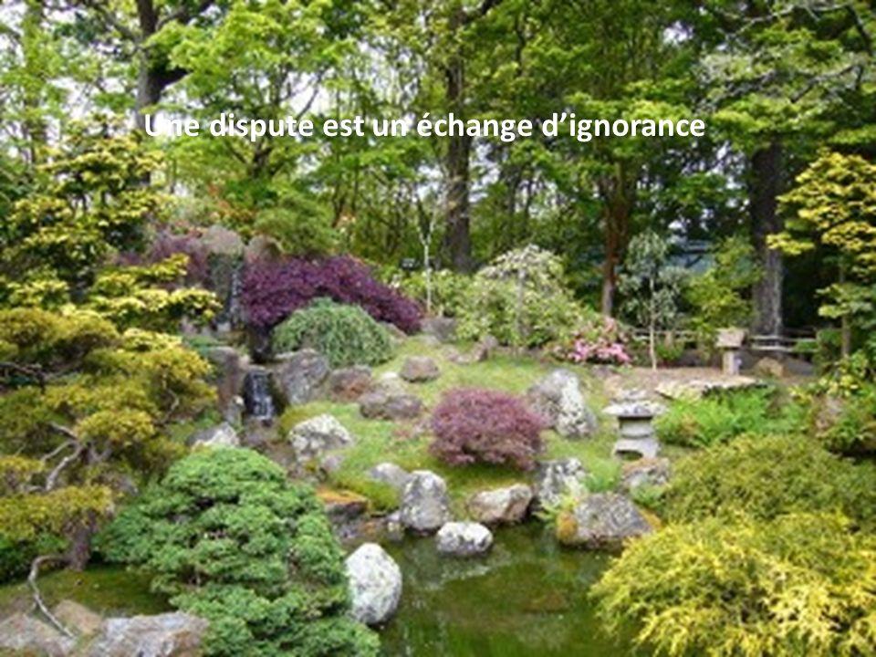 Une dispute est un échange d'ignorance