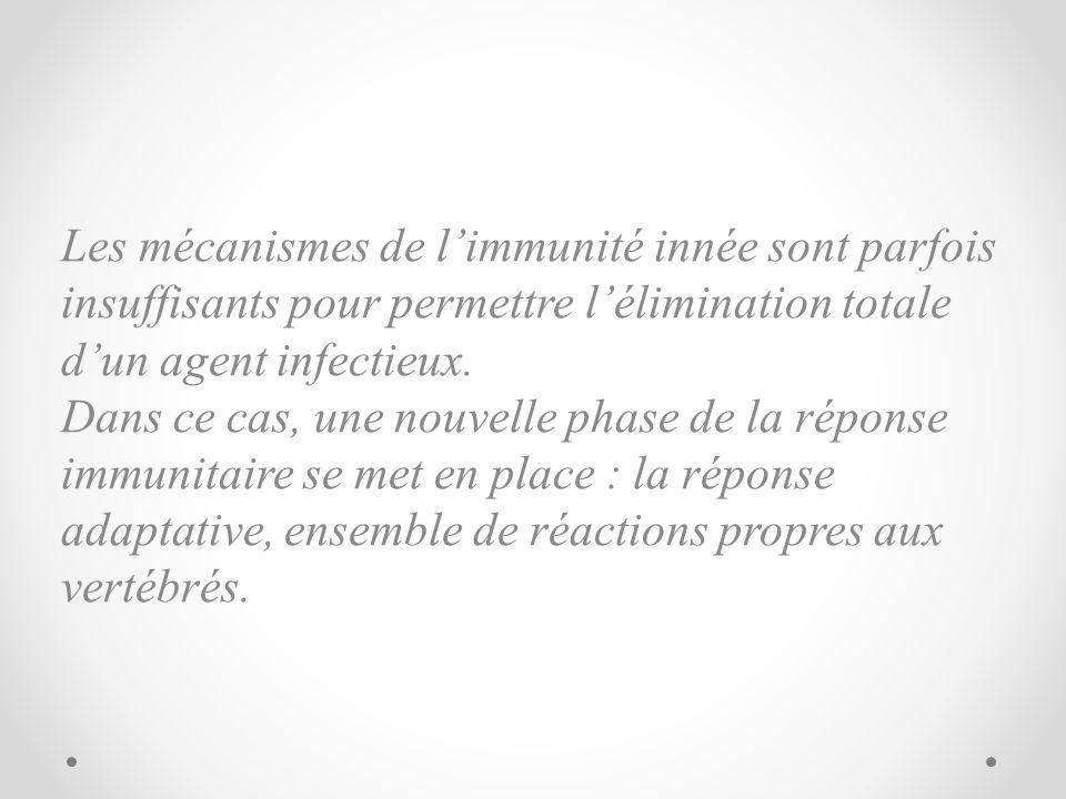 Les mécanismes de l'immunité innée sont parfois insuffisants pour permettre l'élimination totale d'un agent infectieux.