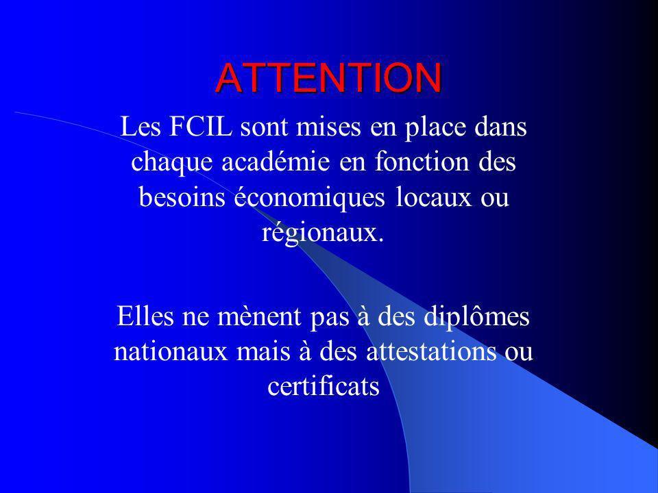 ATTENTION Les FCIL sont mises en place dans chaque académie en fonction des besoins économiques locaux ou régionaux.