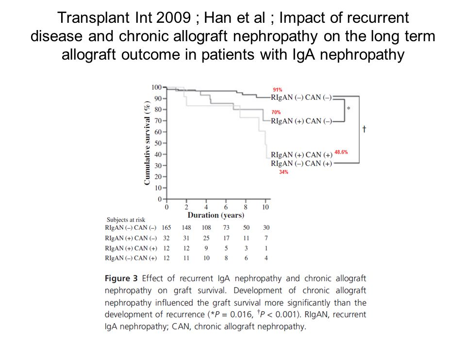 Transplant Int 2009 ; Han et al ; Impact of recurrent disease and chronic allograft nephropathy on the long term allograft outcome in patients with IgA nephropathy