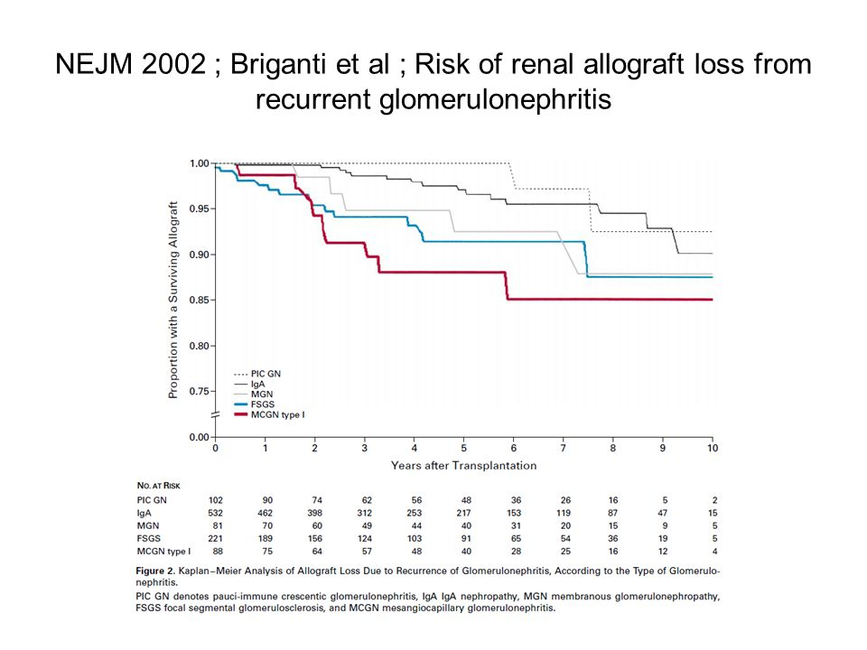 NEJM 2002 ; Briganti et al ; Risk of renal allograft loss from recurrent glomerulonephritis