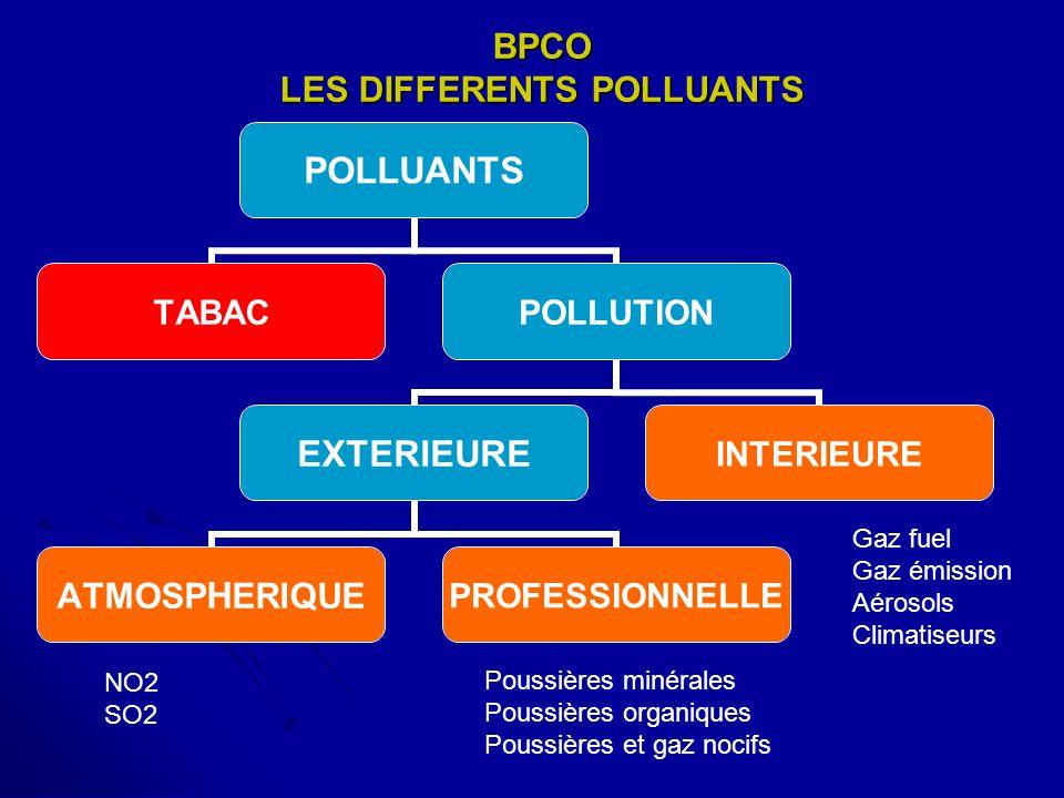 BPCO LES DIFFERENTS POLLUANTS