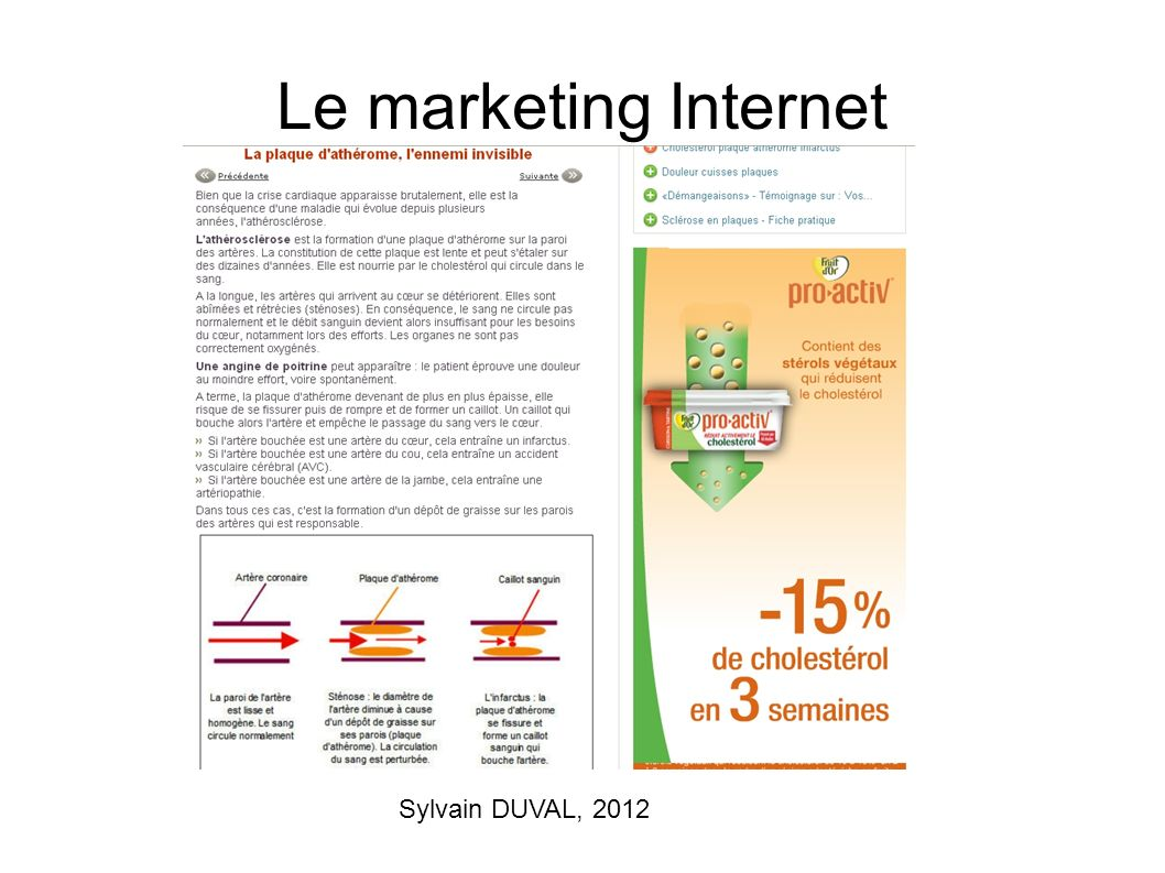 Le marketing Internet Sylvain DUVAL, 2012
