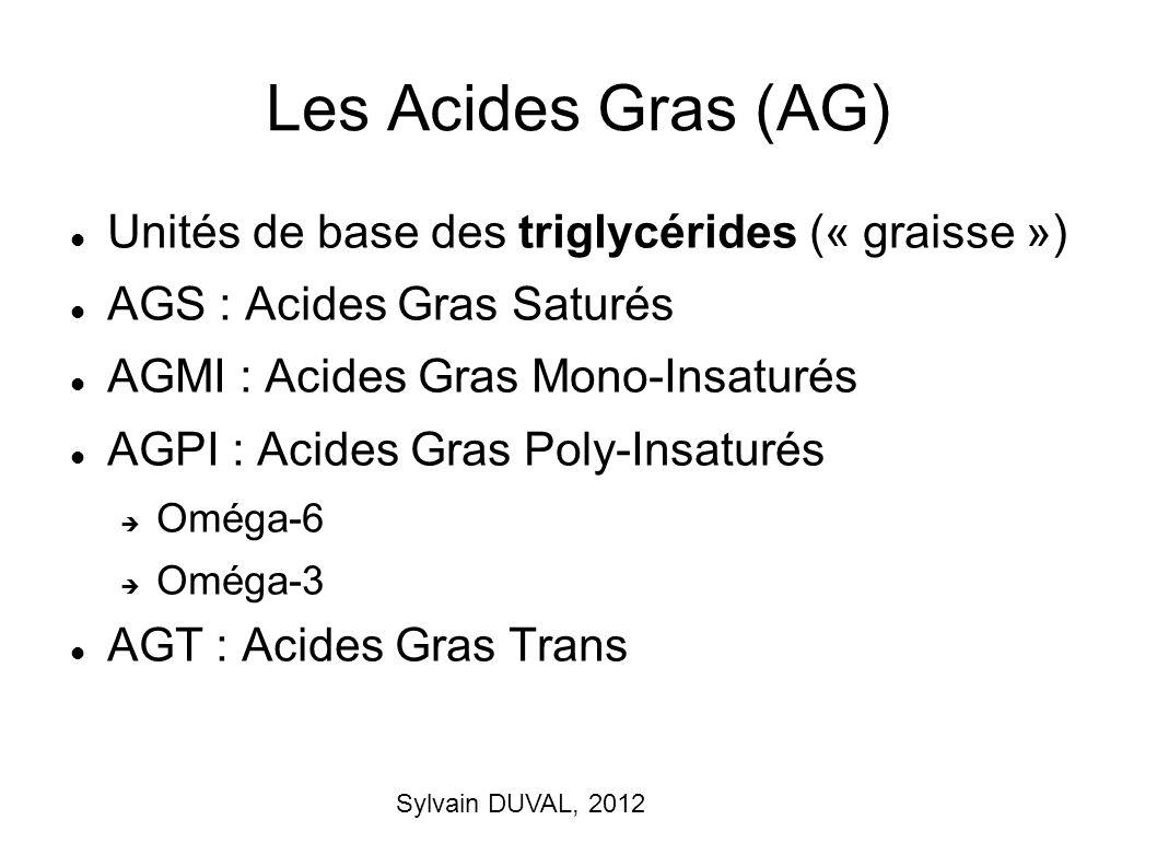 Les Acides Gras (AG) Unités de base des triglycérides (« graisse »)