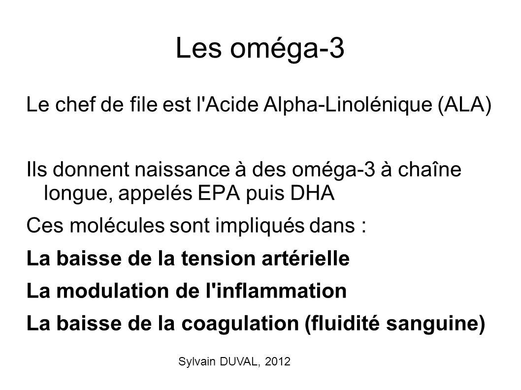 Les oméga-3 Le chef de file est l Acide Alpha-Linolénique (ALA)