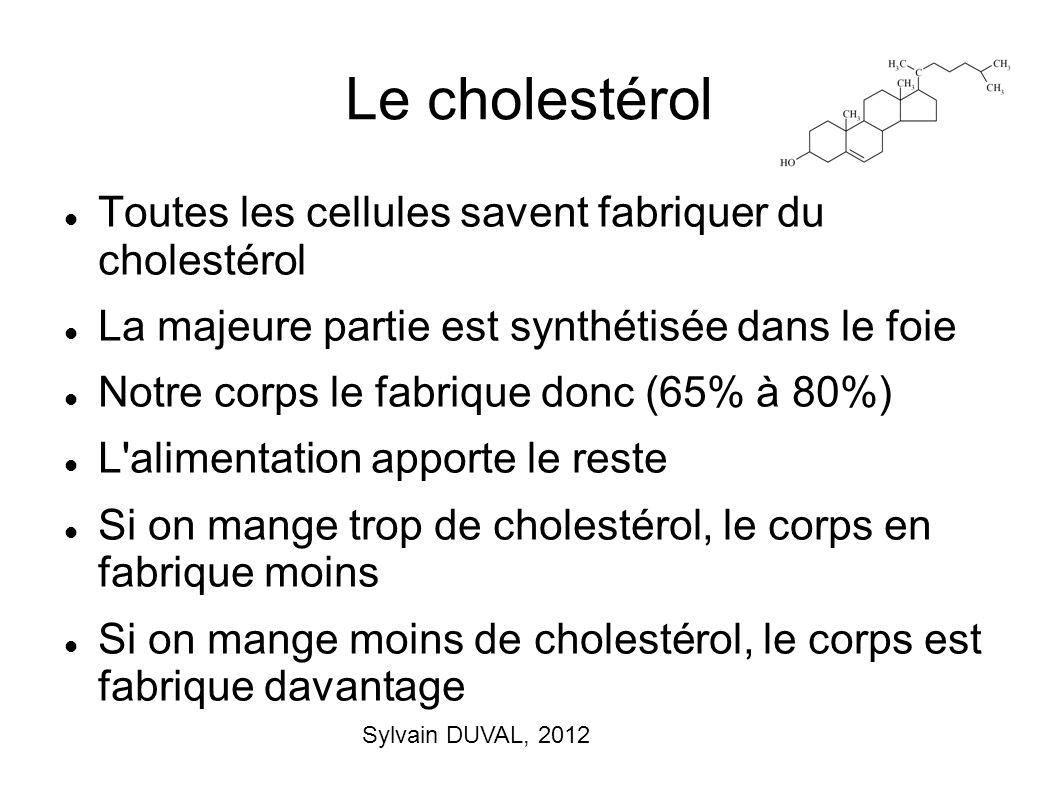Le cholestérol Toutes les cellules savent fabriquer du cholestérol