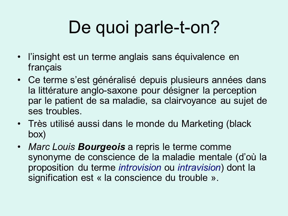 De quoi parle-t-on l'insight est un terme anglais sans équivalence en français.