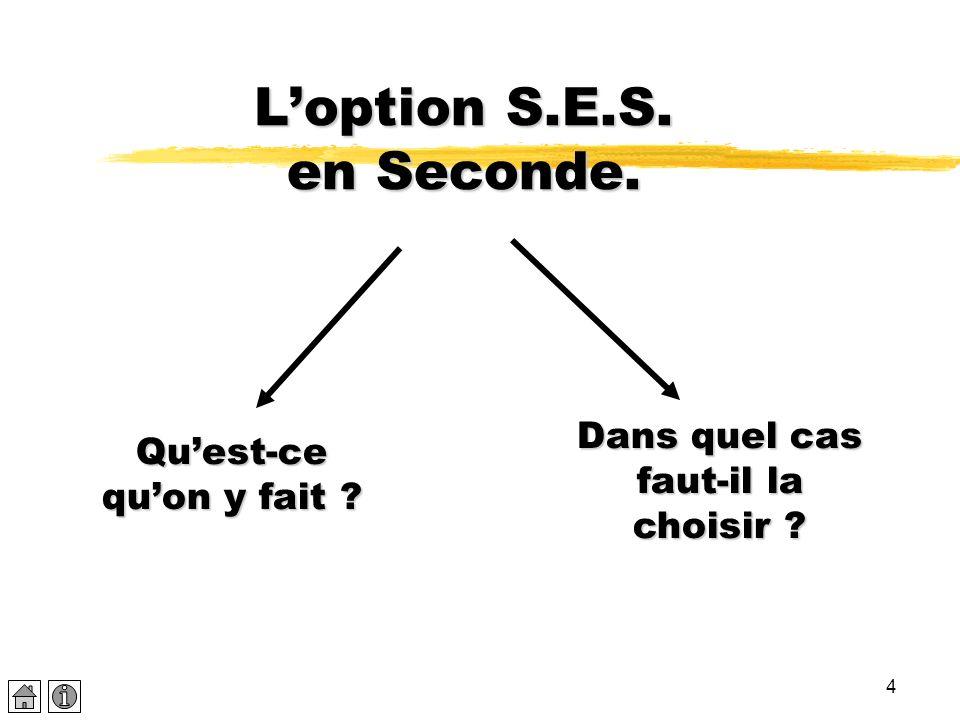 L'option S.E.S. en Seconde.