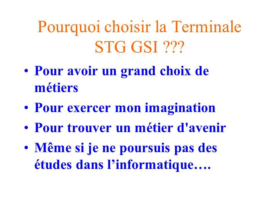 Pourquoi choisir la Terminale STG GSI