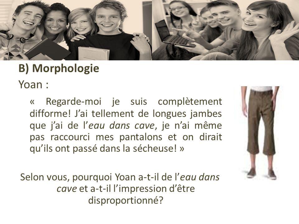 B) Morphologie Yoan :