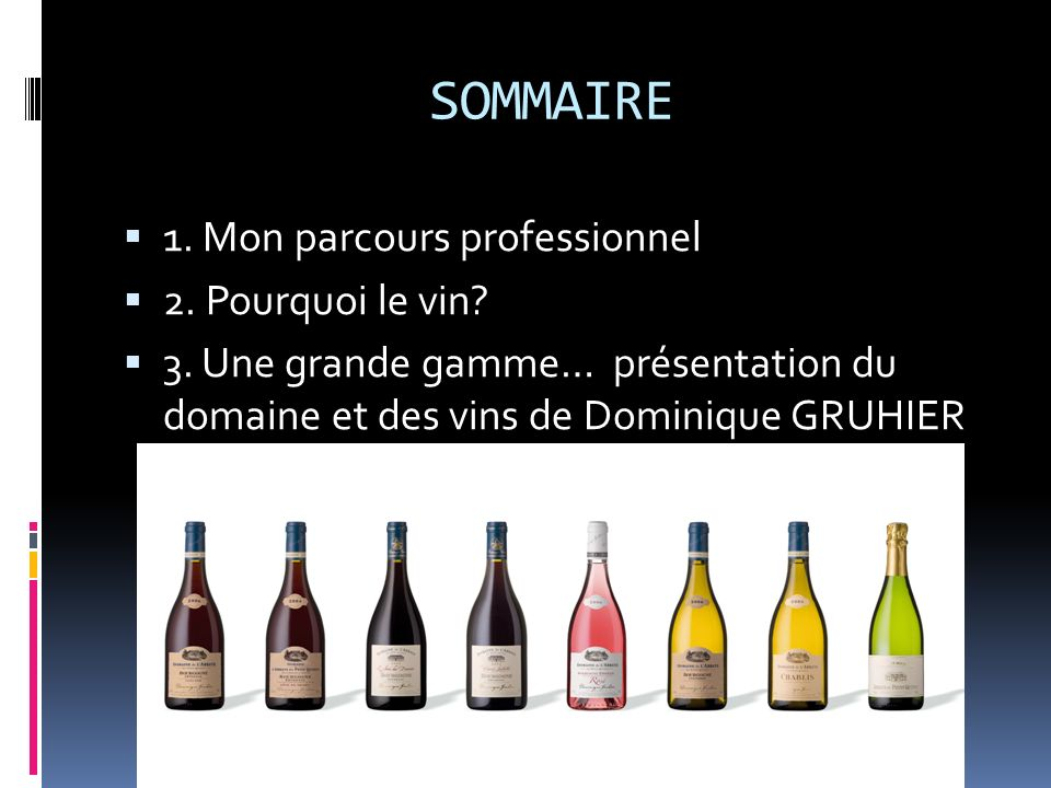 SOMMAIRE 1. Mon parcours professionnel 2. Pourquoi le vin