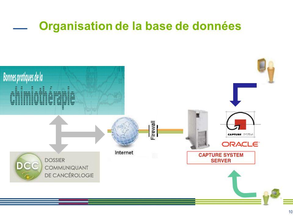 Organisation de la base de données