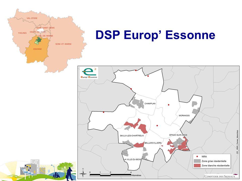 DSP Europ' Essonne Les réseaux d'initiative publique : des outils pour prendre son destin en main.