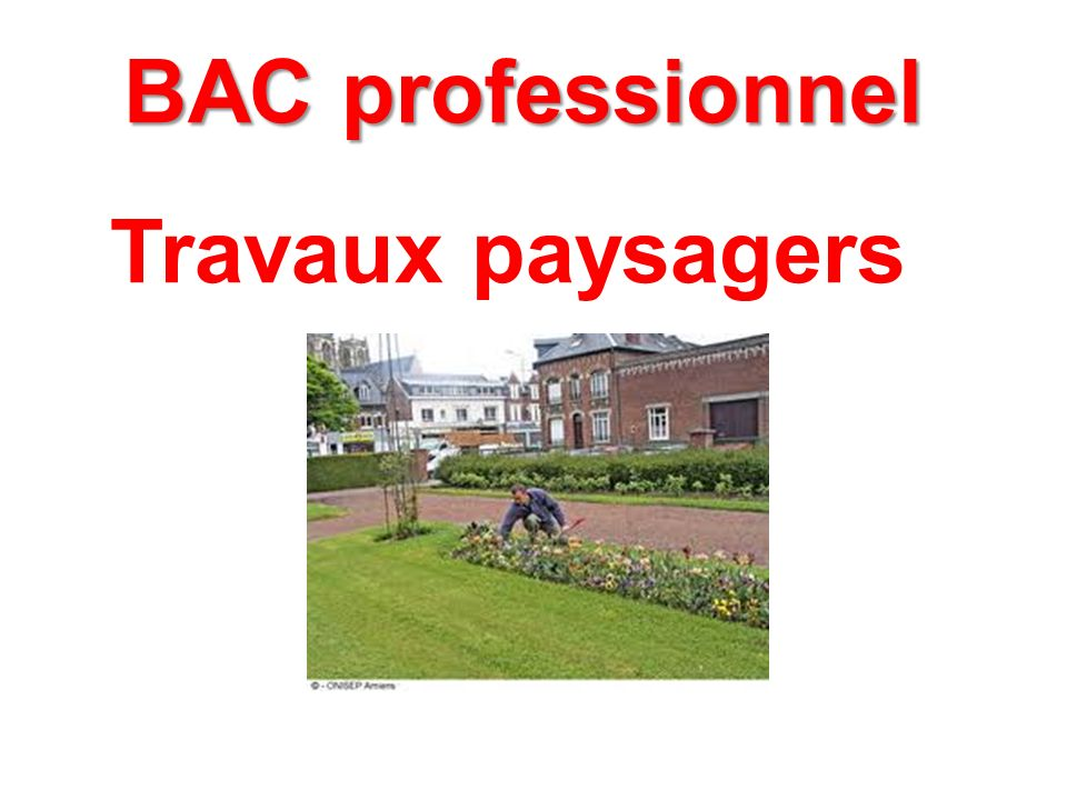 BAC professionnel Travaux paysagers