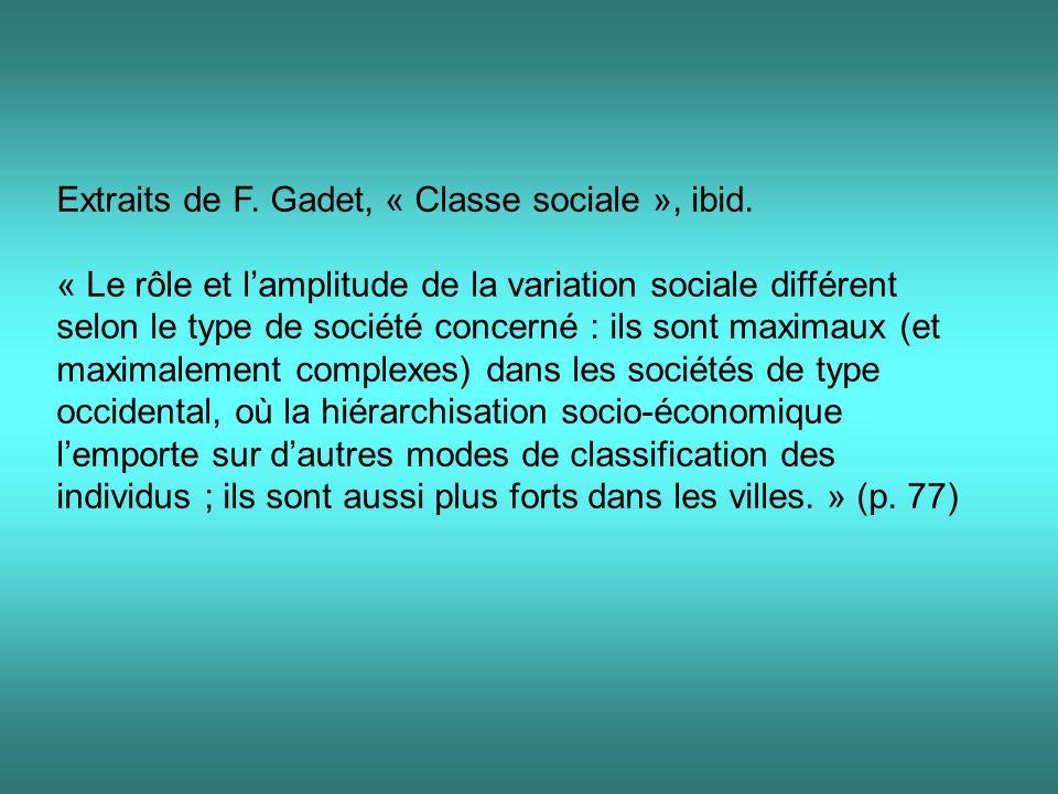 Extraits de F. Gadet, « Classe sociale », ibid.
