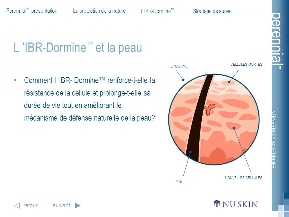 L 'IBR-Dormine™ et la peau