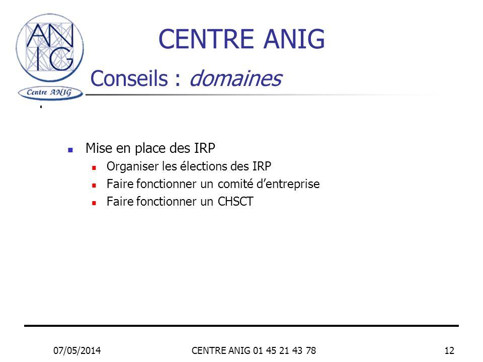 CENTRE ANIG Conseils : domaines Mise en place des IRP