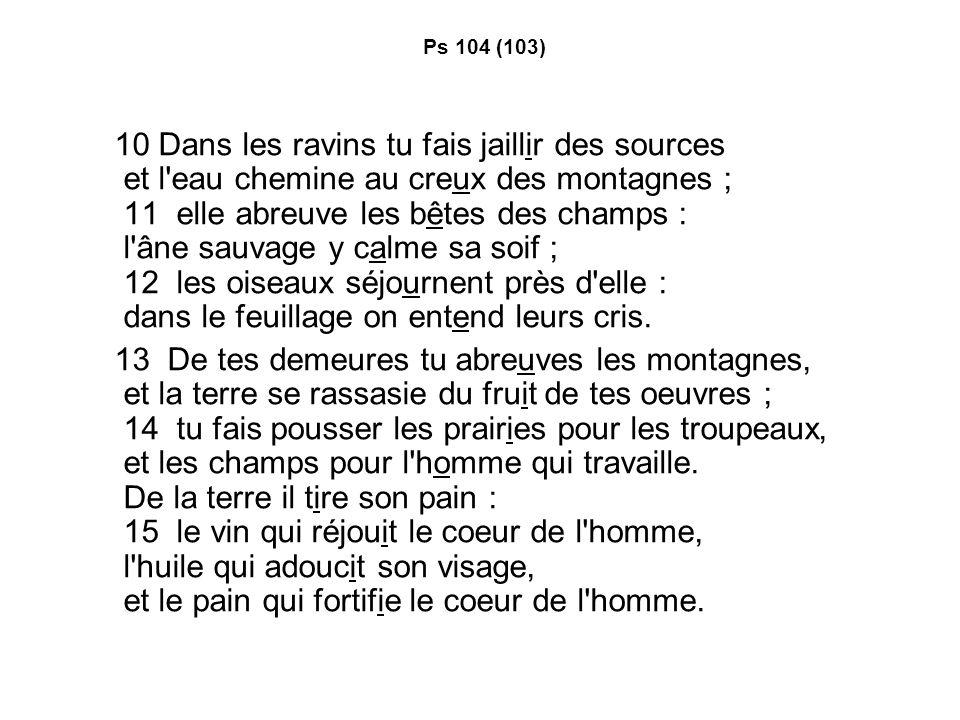 Ps 104 (103)