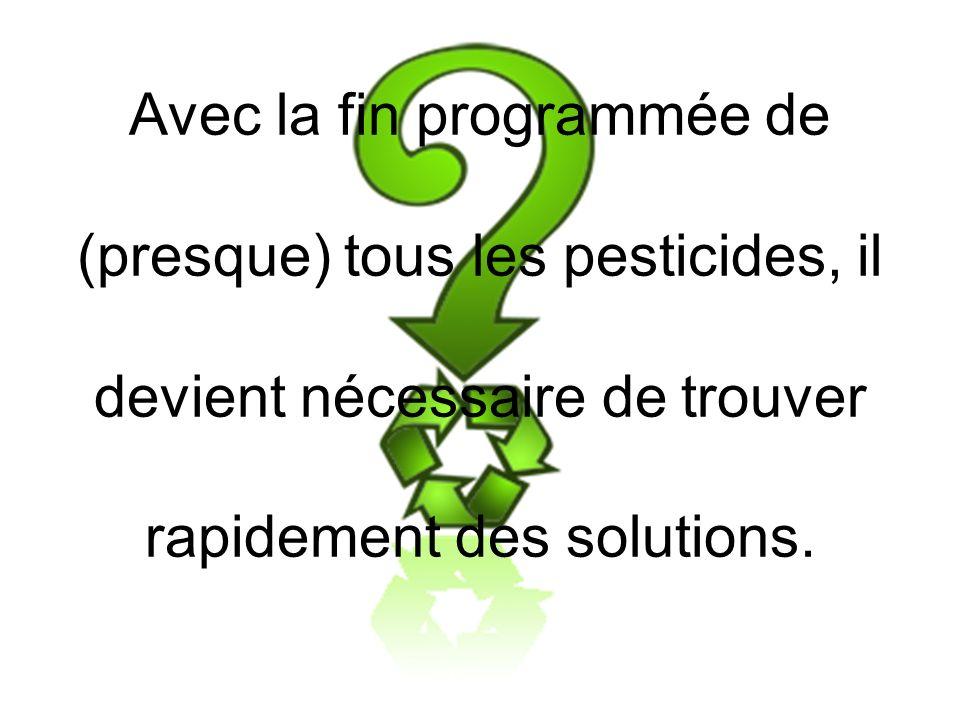 Avec la fin programmée de (presque) tous les pesticides, il devient nécessaire de trouver rapidement des solutions.