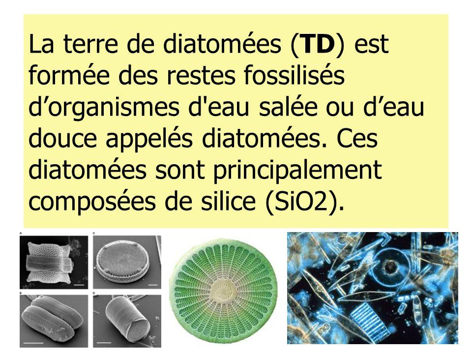 La terre de diatomées (TD) est formée des restes fossilisés d'organismes d eau salée ou d'eau douce appelés diatomées.
