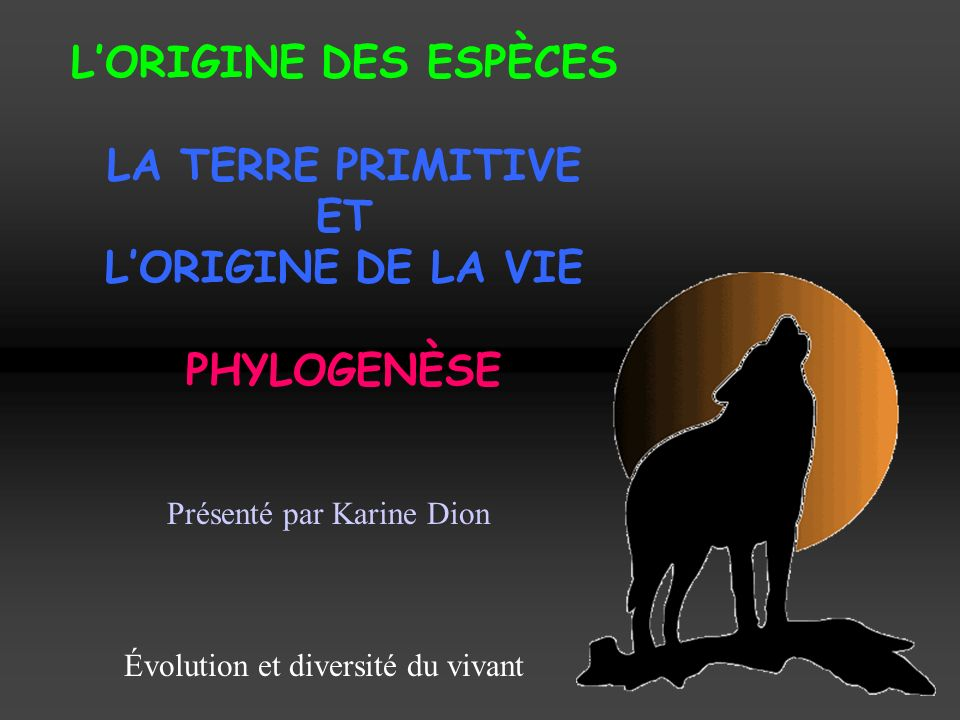 L'ORIGINE DES ESPÈCES LA TERRE PRIMITIVE ET L'ORIGINE DE LA VIE PHYLOGENÈSE