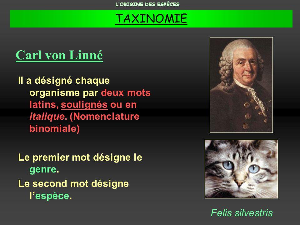 Carl von Linné TAXINOMIE