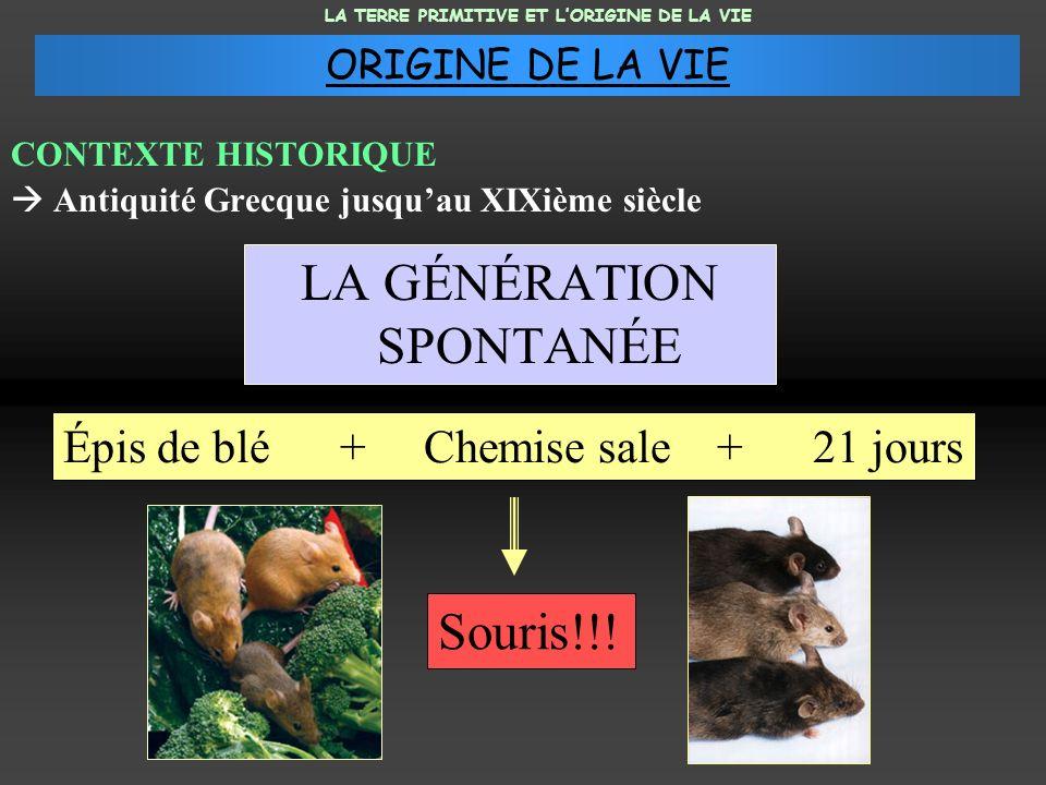 LA GÉNÉRATION SPONTANÉE