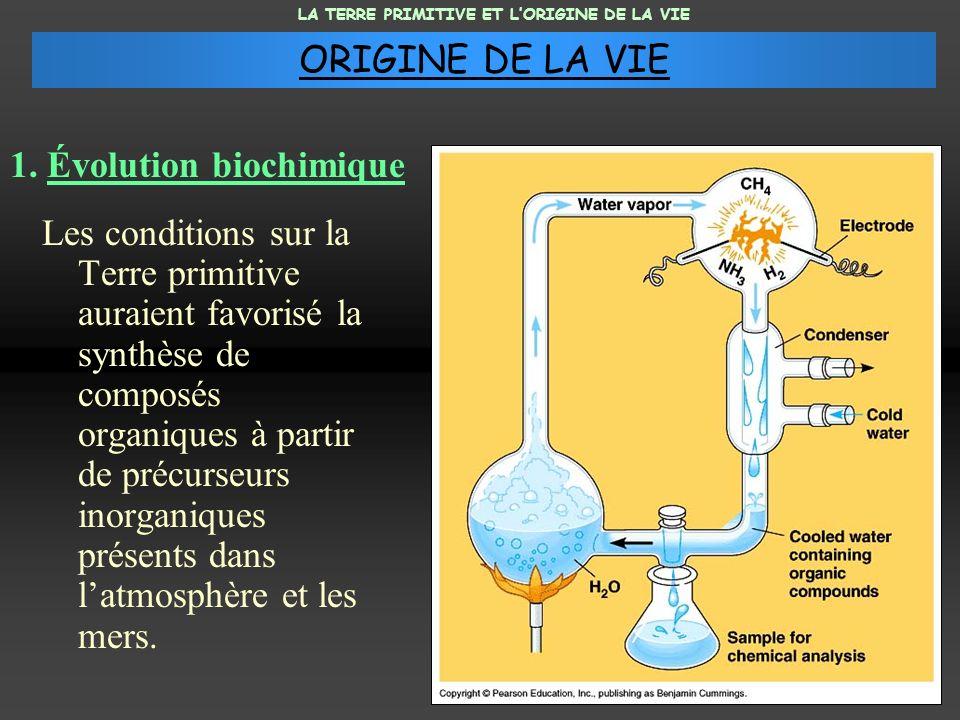1. Évolution biochimique