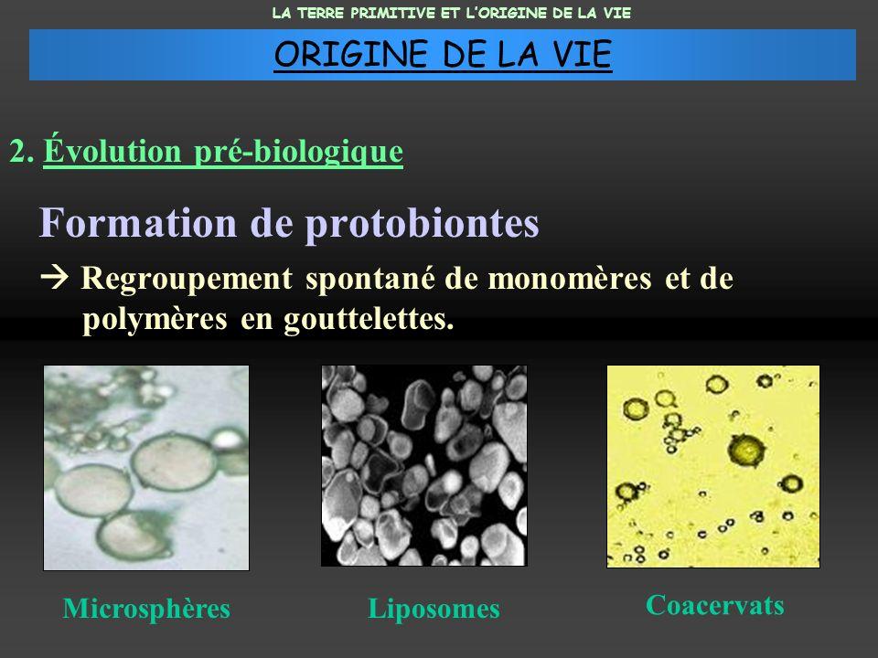 Formation de protobiontes