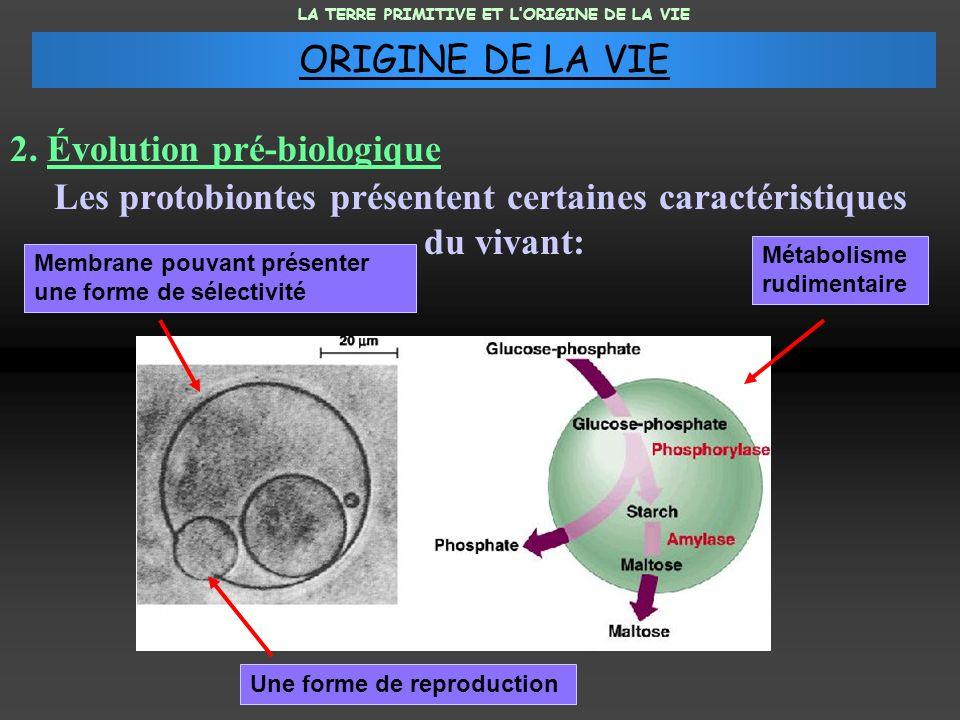 Les protobiontes présentent certaines caractéristiques du vivant: