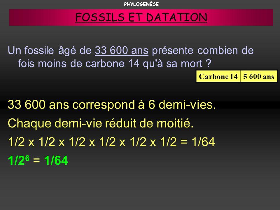 33 600 ans correspond à 6 demi-vies. Chaque demi-vie réduit de moitié.