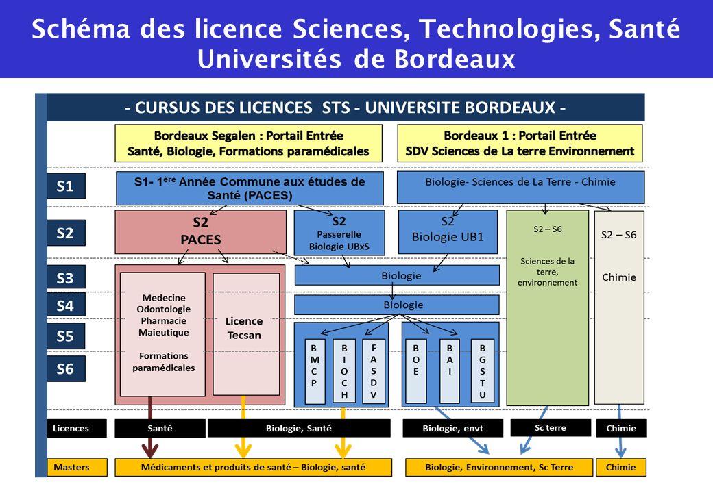 Schéma des licence Sciences, Technologies, Santé