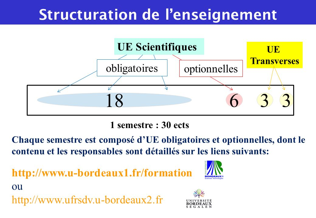Structuration de l'enseignement