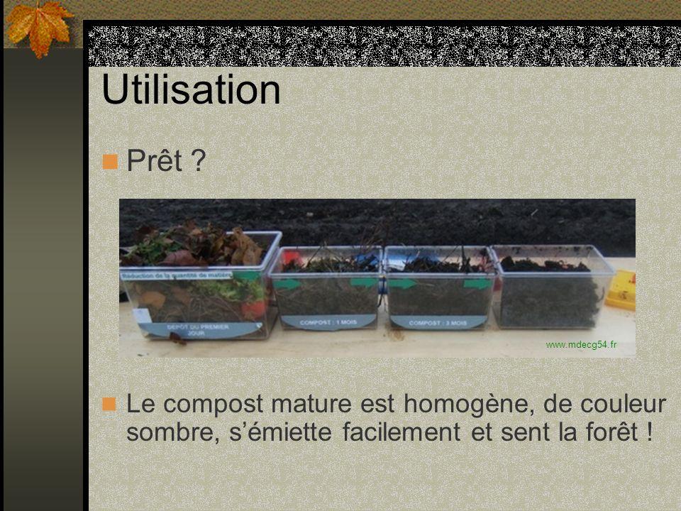 Utilisation Prêt Le compost mature est homogène, de couleur sombre, s'émiette facilement et sent la forêt !