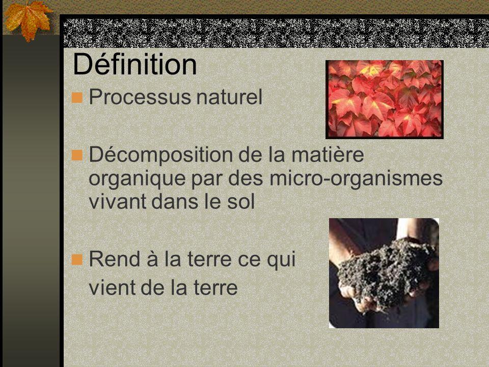 Définition Processus naturel