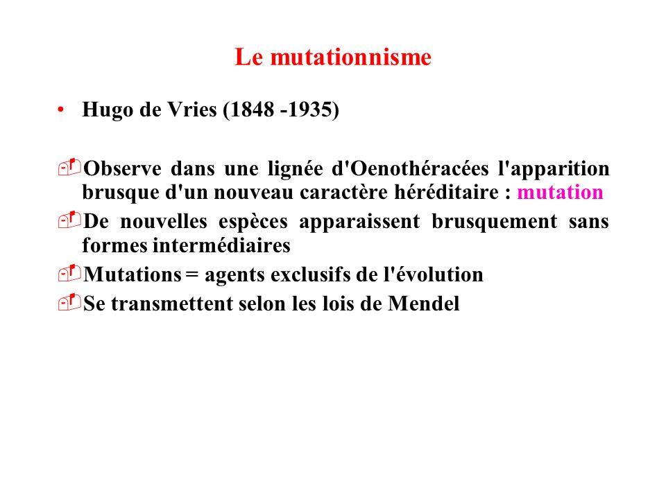 Le mutationnisme Hugo de Vries (1848 -1935)