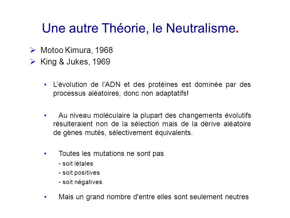 Une autre Théorie, le Neutralisme.