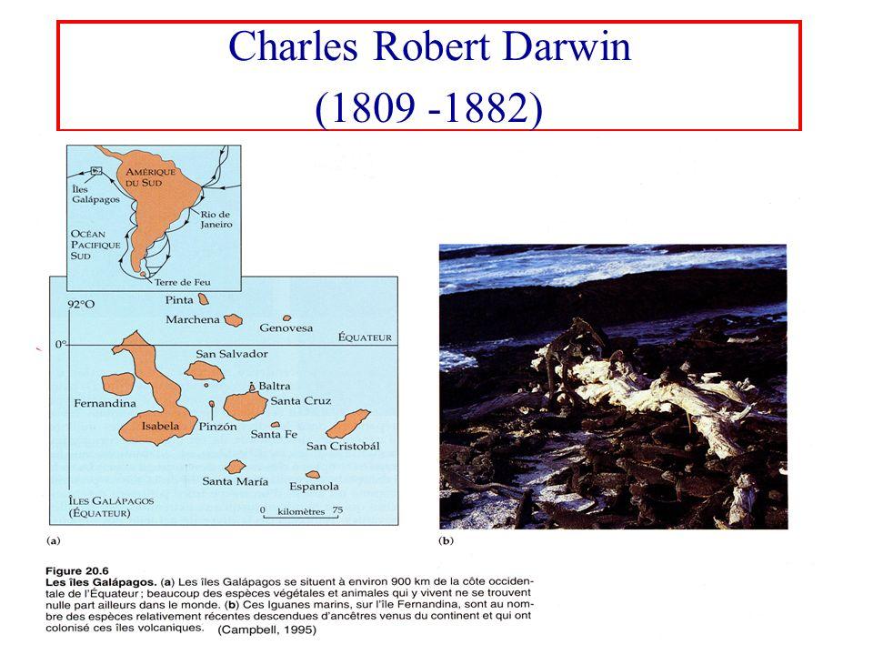 Charles Robert Darwin (1809 -1882)