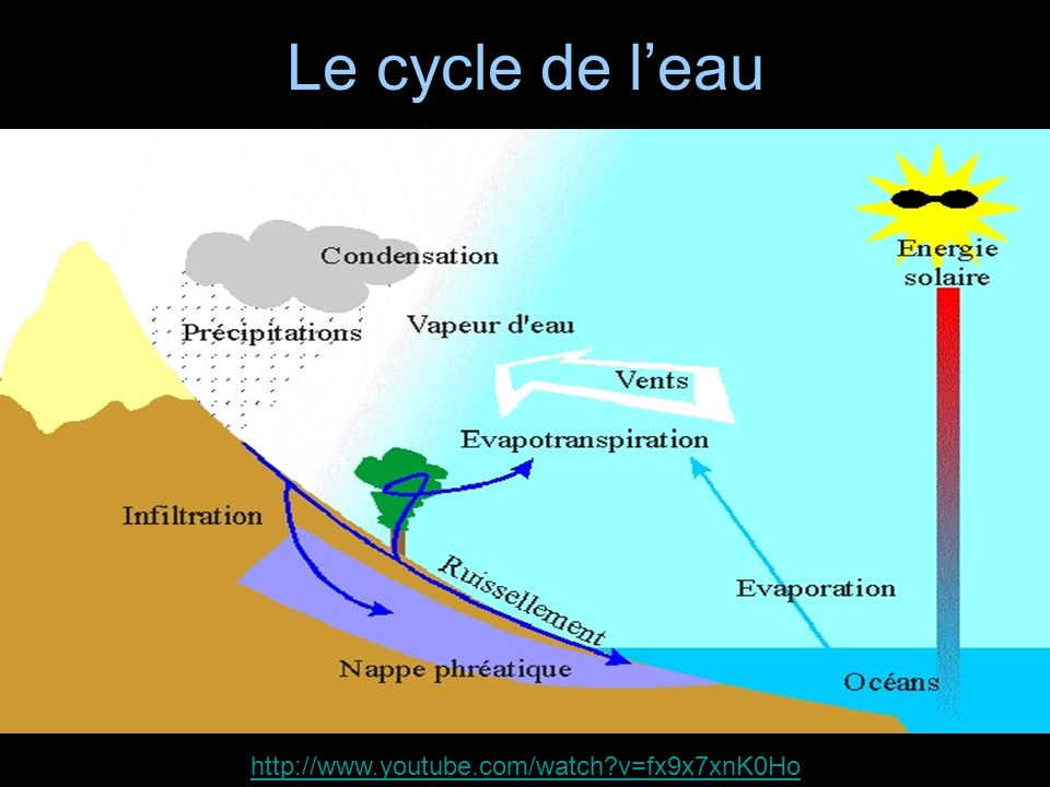 Le cycle de l'eau http://www.youtube.com/watch v=fx9x7xnK0Ho