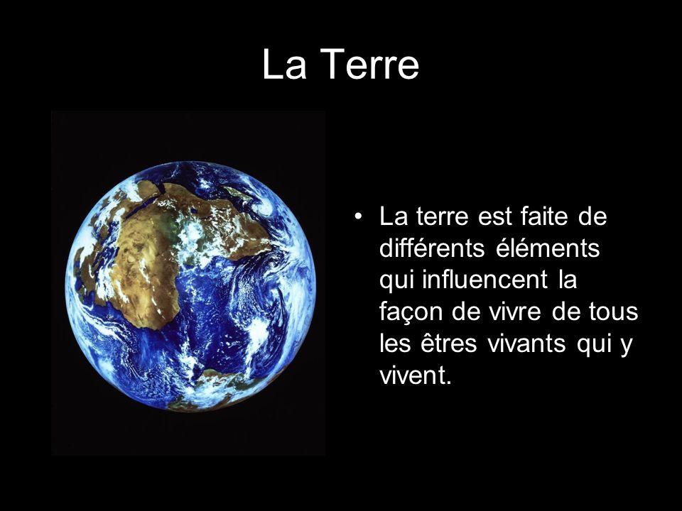 La TerreLa terre est faite de différents éléments qui influencent la façon de vivre de tous les êtres vivants qui y vivent.