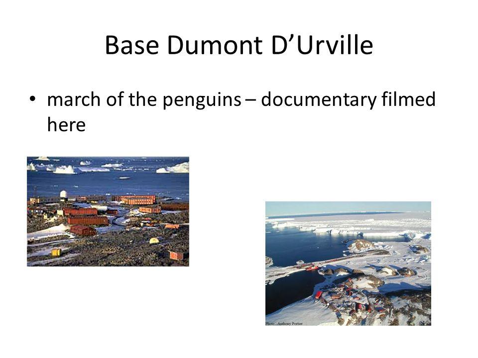 Base Dumont D'Urville march of the penguins – documentary filmed here