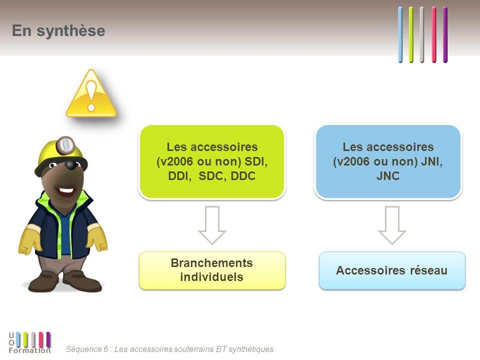 En synthèse Les accessoires (v2006 ou non) SDI, DDI, SDC, DDC