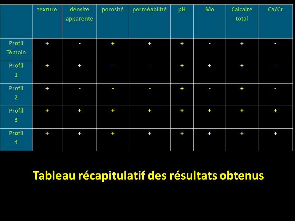 Tableau récapitulatif des résultats obtenus