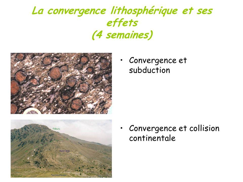 La convergence lithosphérique et ses effets (4 semaines)