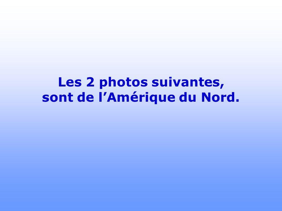 Les 2 photos suivantes, sont de l'Amérique du Nord.