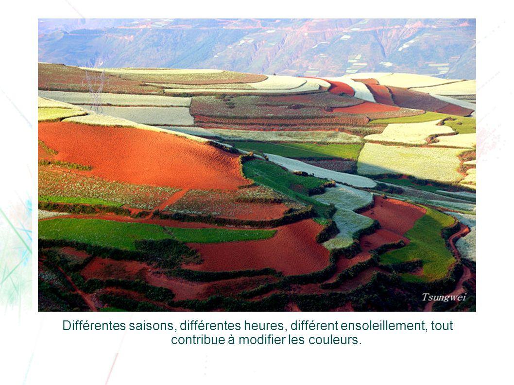 Différentes saisons, différentes heures, différent ensoleillement, tout contribue à modifier les couleurs.